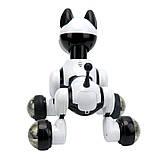 Детский Робот Интерактивная собака на пульте Youdy - MG014, фото 3