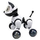Детский Робот Интерактивная собака на пульте Youdy - MG014, фото 4