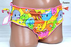 Купальні плавки дитячі для дівчаток Діно Різні кольори та розміри