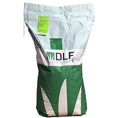 Семена газонной травы DLF Trifolium PLAYGROUND 20 кг