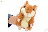 Інтерактивна іграшка говорить хом'як повторюшка, дитяча говорящяя м'яка іграшка, фото 9