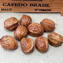 Орех грецкий искусственный, 3,3 см,  1 шт.