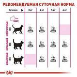 Royal Canin Exigent savour, 0.4кг — Корм для кошек, привередливых ко вкусу продукта, фото 4
