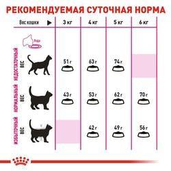 Рекомендуемая суточная норма сухого корма Роял Канин для привередливых котов