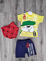 Дитячий костюм 3-12 міс для хлопчиків оптом Туреччина