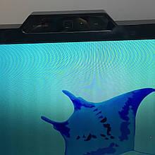 """Игровой монитор ASUS VK248 24"""" Full HD, 2мс, веб-камера, HDMI, встроенные динамики"""