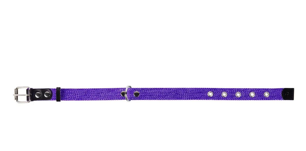 Ошейник х/б тесьма CoLLaR фиолетовый для собак (ширина 25мм, длина 41-53см) 02629