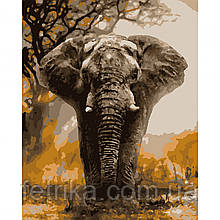 "Набор для рисования, картина по номерам ""Слон"", 40*50 см., SANTI"