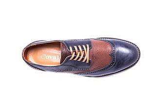 Туфлі синьо - коричневі Covalli