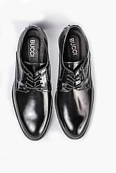 Кожание Туфли черные Bucci 262 - 41,5 розмір