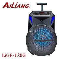 "AILIANG LiGe-120G 12""  bluetooth колонка"