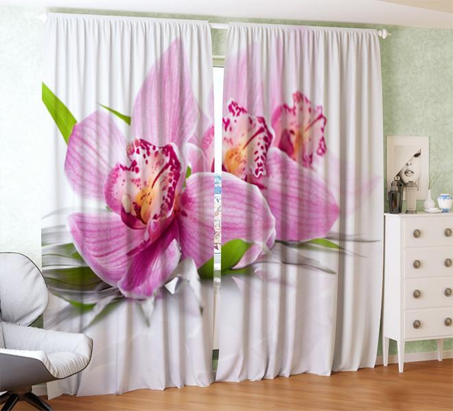 Фотошторы орхідея на білому тлі