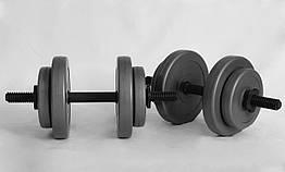 Гантели WCG 2х8 кг Серые (310.001.001)