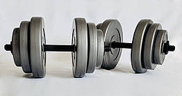 Гантели WCG 2х18 кг Серые (310.001.005)