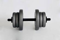 Гантель WCG 10 кг Серые (310.001.010)