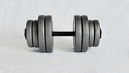 Гантель WCG 15 кг Серая (310.001.012)