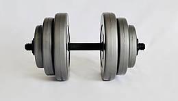 Гантель WCG 18 кг Серая (310.001.013)