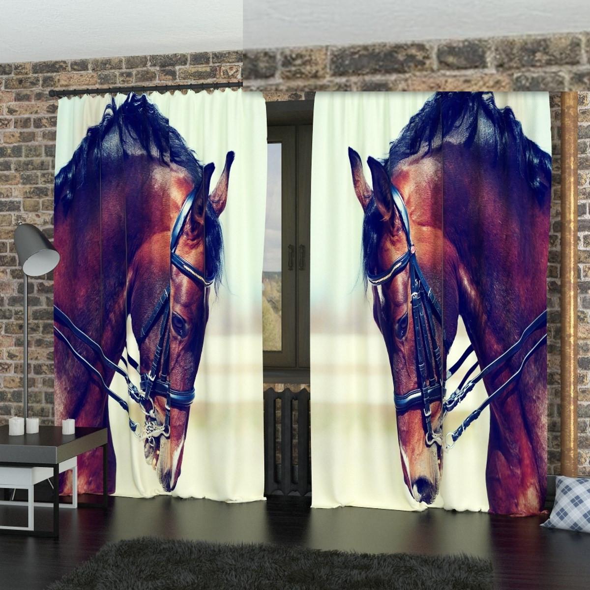 Фотошторы коні