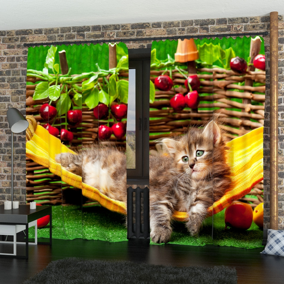 Фотошторы кіт в гамаку