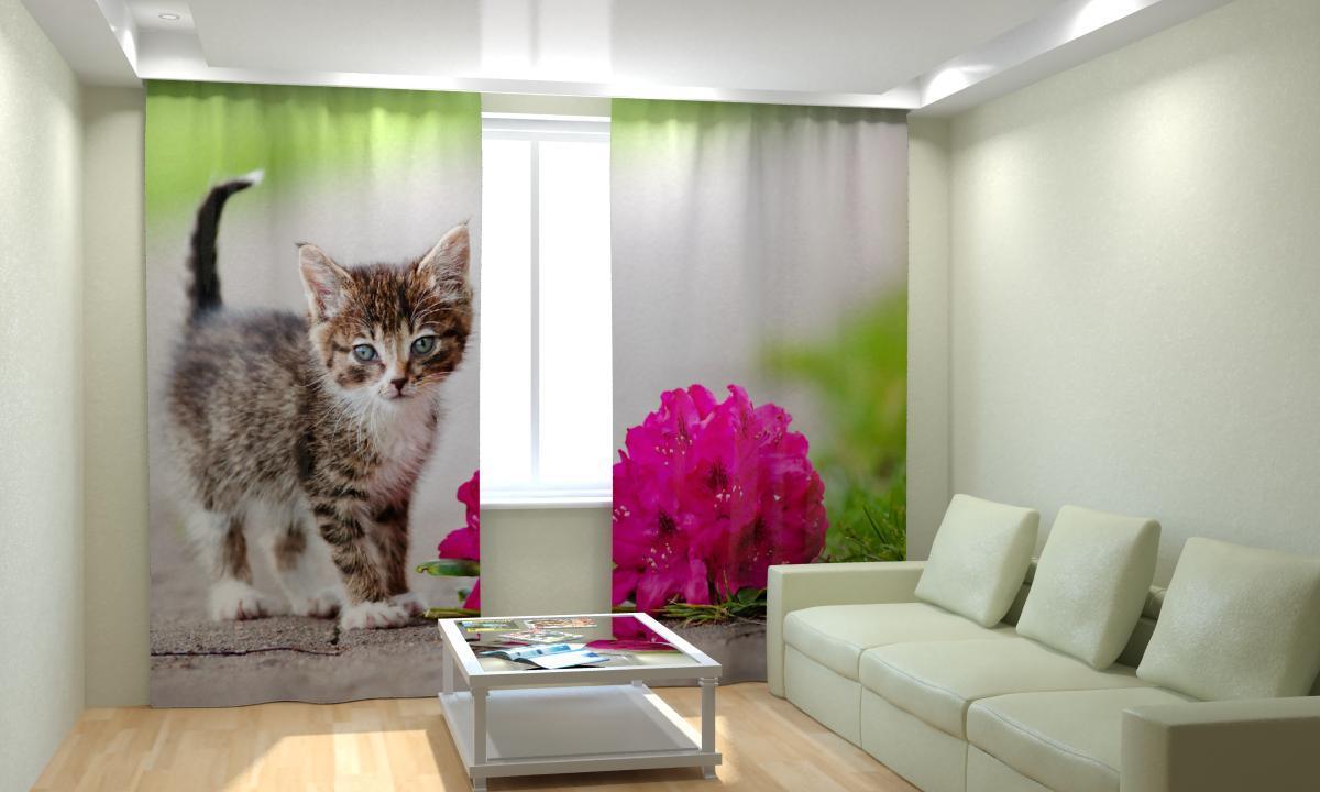 Фотошторы кошеня з квіточкою