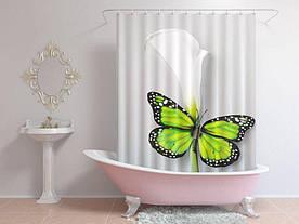 Штори для ванної метелик на квітці