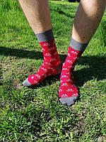 Високі шкарпетки