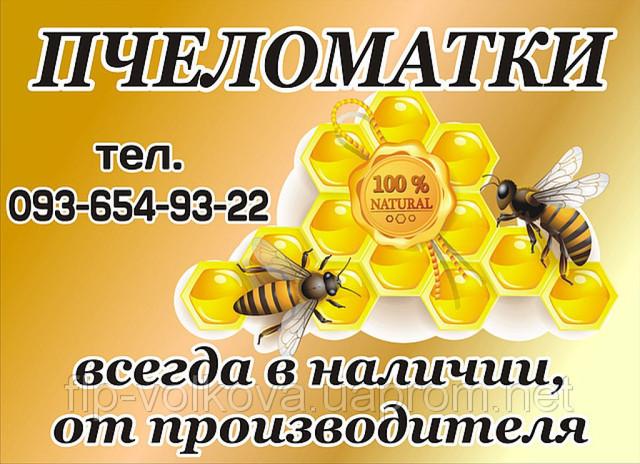 """Пчеломатки """"Украинская степная"""" - Бджоломатки """"Українська степова"""""""