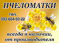 Пчелиная матка - Матка пчелы - Плодная матка украинской степной породы