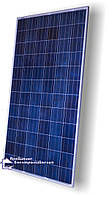 Сонячна батарея Perlight Solar PLM-250P-60, 250W, 24V
