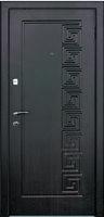 Дверь входная металлическая Цезарь 2