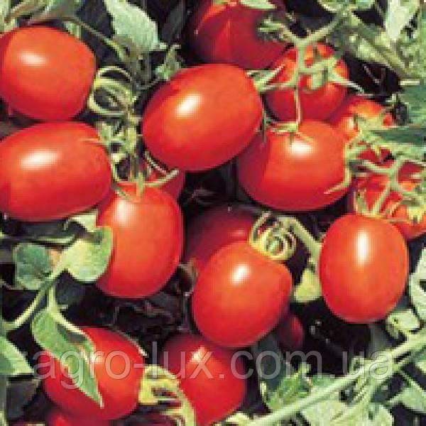 Семена томата Перфектпил F1 25000 сем Seminis / Семинис