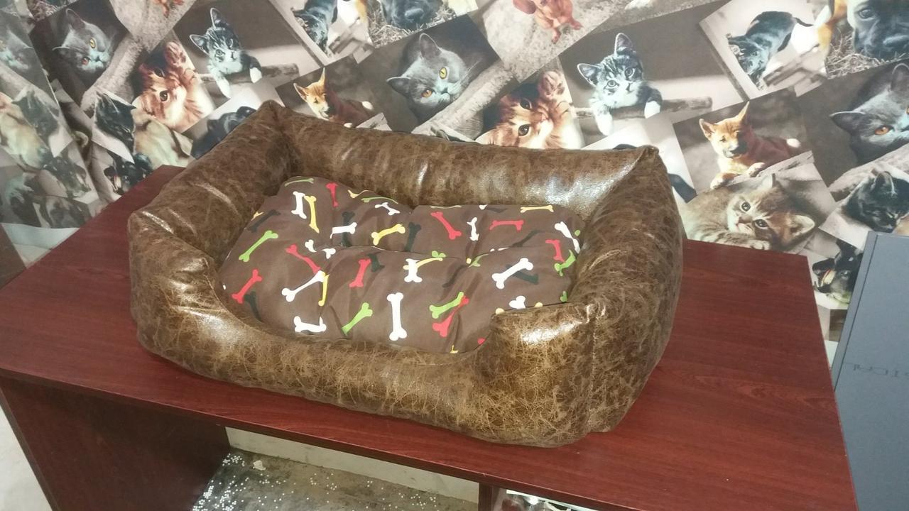 Лежаки для собак і кішок 70х50см. Лежанка, Лежаки, лежак, лежак для кішки, лежак для собаки, лежанка