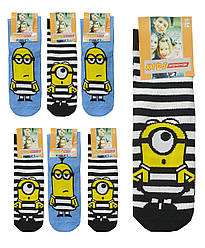 Носки детские демисезонные высокие для мальчика, Миньон, Proxy,kids socks (размер 22-24(1-3л))