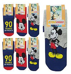 Носки детские демисезонные высокие для мальчика,Proxy,kids socks (размер 34-36(9-11л))