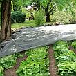"Агроволокно белое 60 г/м² 1.6х100 м. ""Shadow"" (Чехия), фото 3"