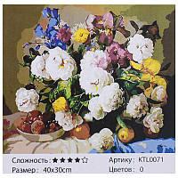 Картина по номерам KTL 0071 40х30см