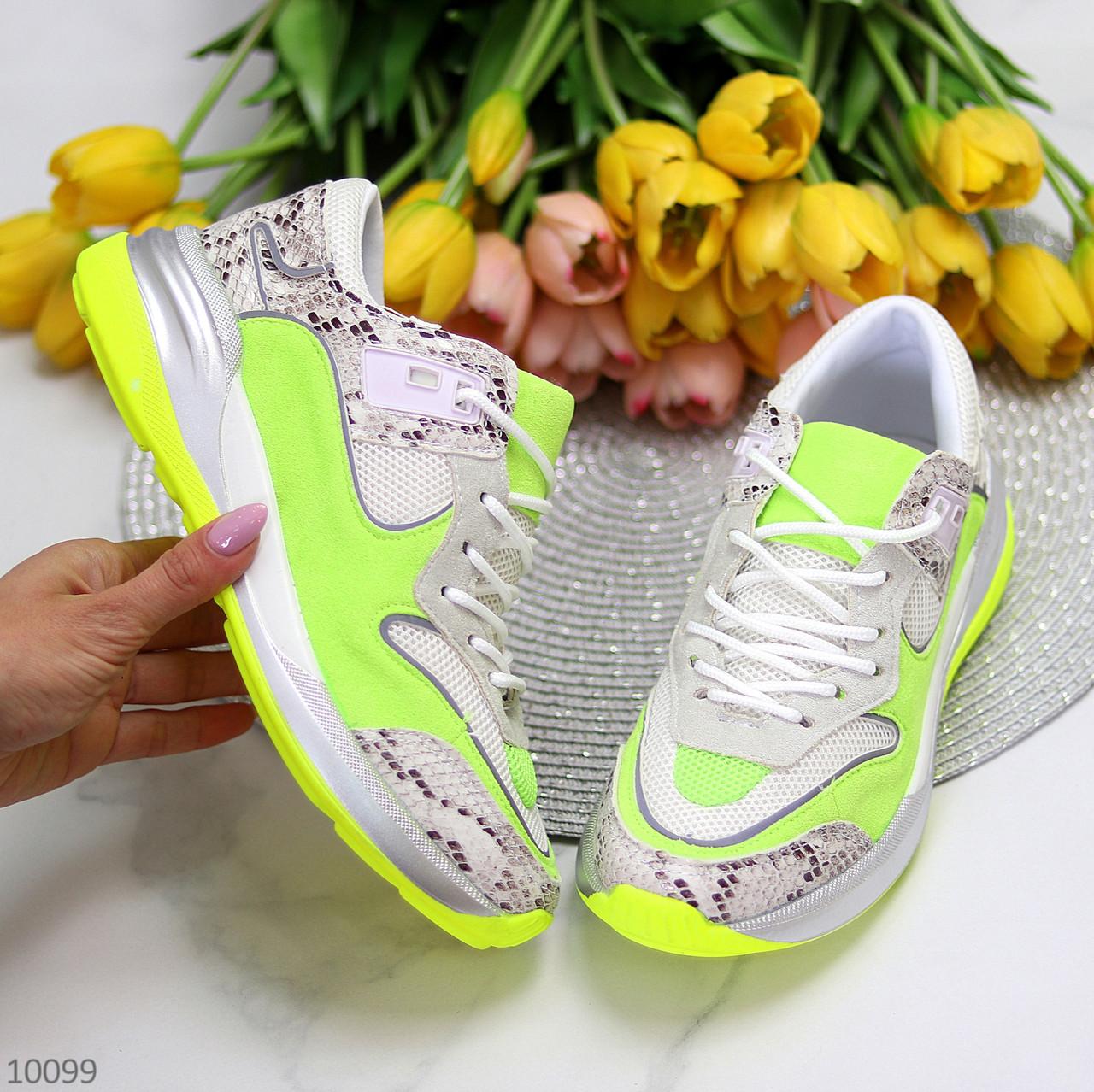 Круті яскраві неонові салатові лаймовые жіночі кросівки мультиколор
