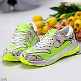 Круті яскраві неонові салатові лаймовые жіночі кросівки мультиколор, фото 2