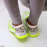 Круті яскраві неонові салатові лаймовые жіночі кросівки мультиколор, фото 5