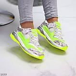 Круті яскраві неонові салатові лаймовые жіночі кросівки мультиколор, фото 10