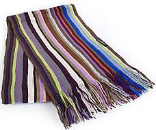 Оригинальный мужской шерстяной шарф в стиле PAUL SMITH 160 на 28 см BAOSIDI (БАОСИДИ) DC183-404