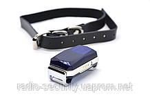 GPS трекер для домашних животных Cargo G12P Collar ошейник