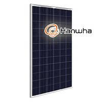 Солнечная батарея Hanwha HSL60P6-PB-1-250 (250 Вт, 8 А, 37 В)