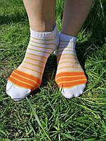 Жіночі недорогі шкарпетки