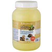 Шампунь Iv San Bernard Ginger and Elderberry дезинфицирующий, с бузиной и имбирем, 3,25л, 3,25 л