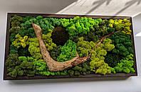 Картина з скандинавського моху (ягель) з деревом., фото 1
