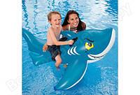 """Надувная игрушка """"Акула"""", фото 1"""