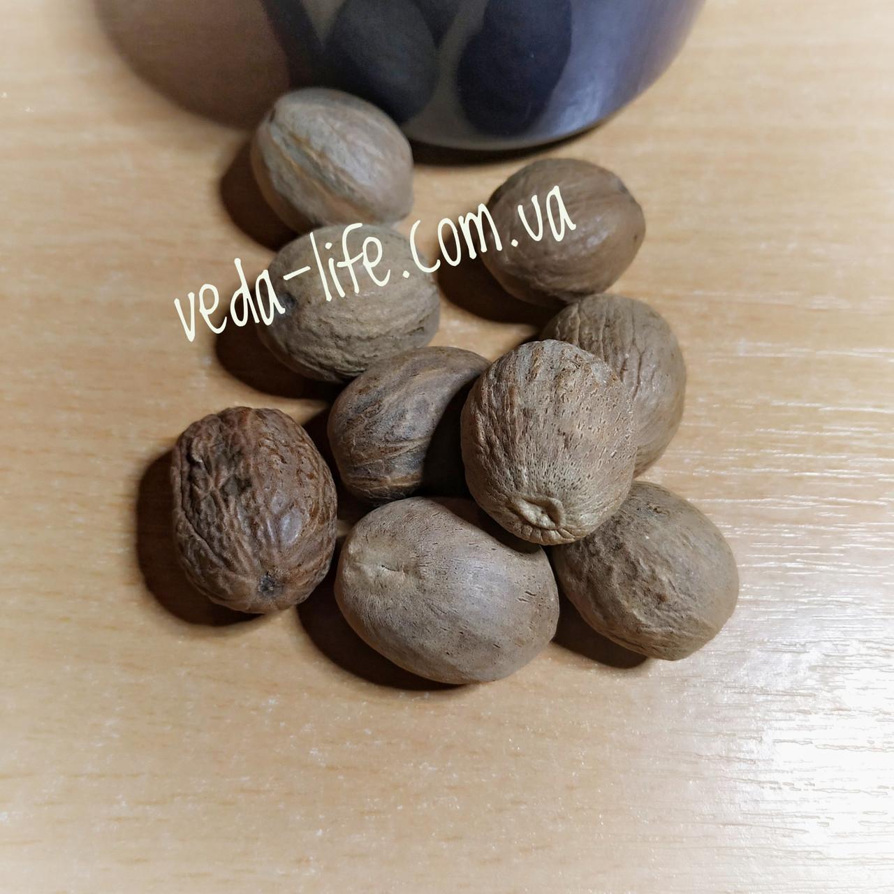 Мускатний горіх великий. Мускатный орех крупный. Орех мускатный отборный. 1 шт. 6-8 грам