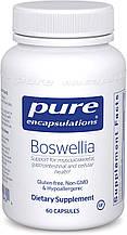 Pure Boswellia / Босвелия 60