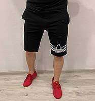 Спортивні чоловічі шорти Adidas Rhodes